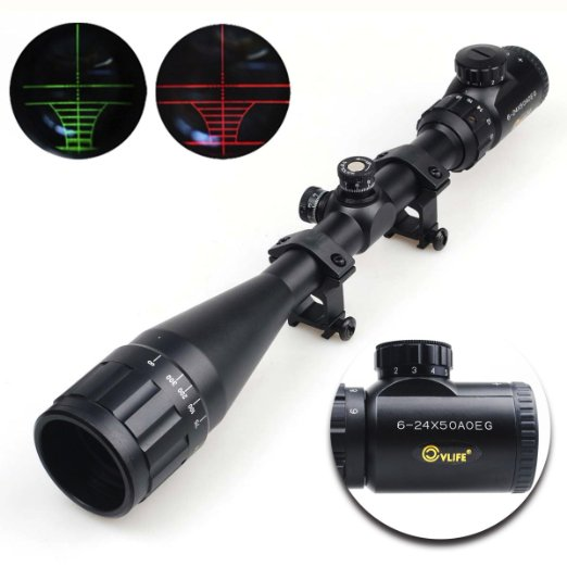 CVLife Budget Scope